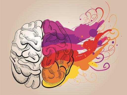 Left-brain vs. Right-brain thinking